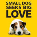 Click here to show your support for Dogs Trust