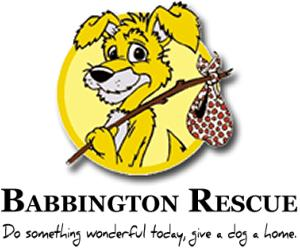 Click here to show your support for Babbington Rescue